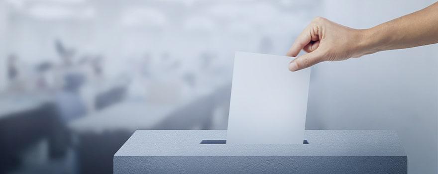11 - voting2-min.jpg