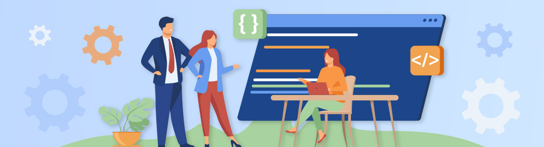 terms and conditions for software development company